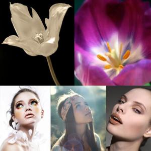 leonie-voets-fotograaf-mierlo-moodboard-floralbeauty-tulp