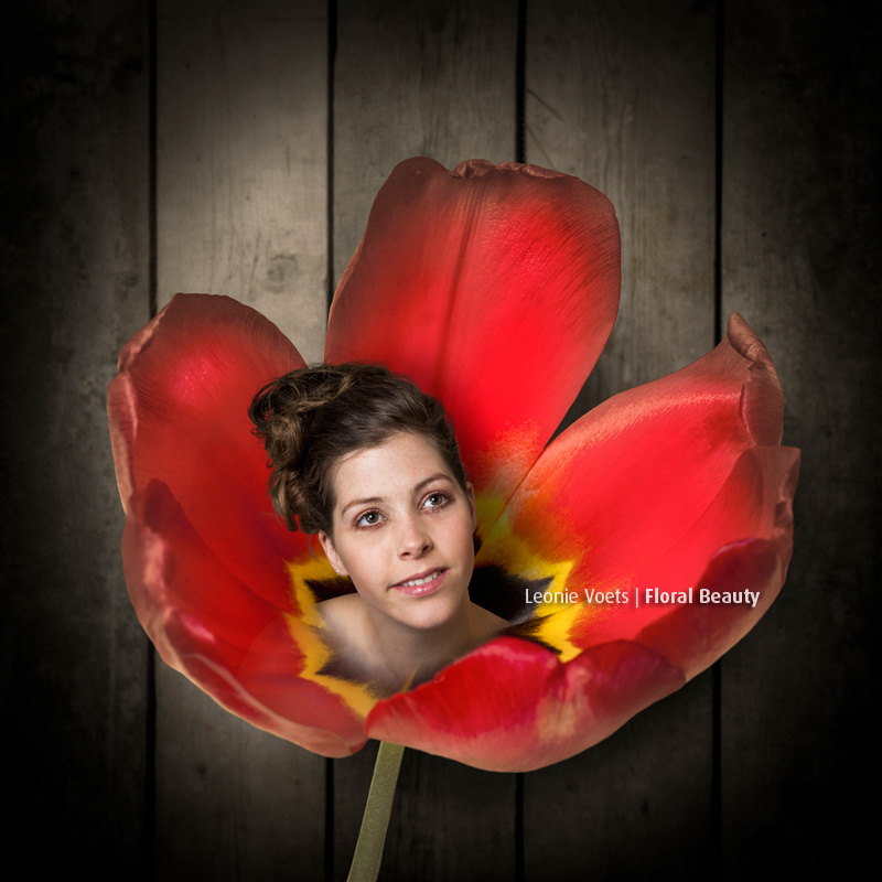 leonie-voets-fotograaf-mierlo-imagingpeople-floralbeauty-tulp-inge