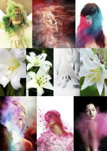 floralbeauty-imagingpeople-leonie-voets-fotograaf-mierlo-moodboard-color-wave